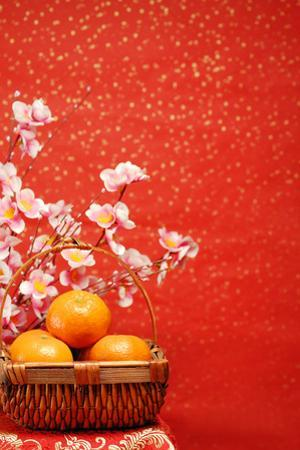 Chinese New Year Decoration--A Basket of Oranges with Plum Flower on a Festive Background. by Liang Zhang