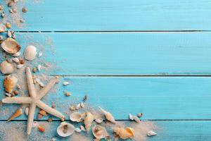 Seashells on Wooden Background by Liang Zhang