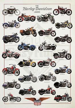 The Harley-Davidson Legend by Libero Patrignani