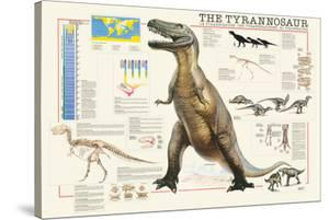 Tyrannosaurus by Libero Patrignani