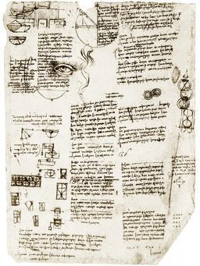 Da Vinci's Notebook by Library of Congress