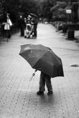 Rainy Day by Liesbeth Van Der