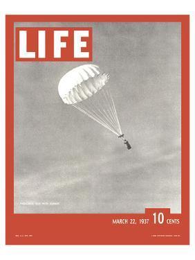 LIFE Parachute Test 1937