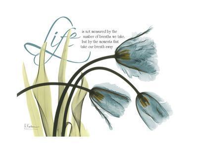 https://imgc.allpostersimages.com/img/posters/life-tulips_u-L-PYK0PO0.jpg?p=0