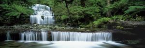 Liffey Falls, Tasmania, Australia