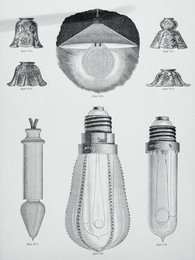 Light Bulbs on Display