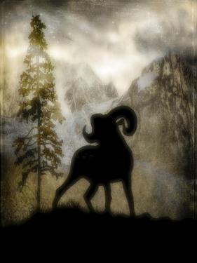 Mystic Big Horn by LightBoxJournal