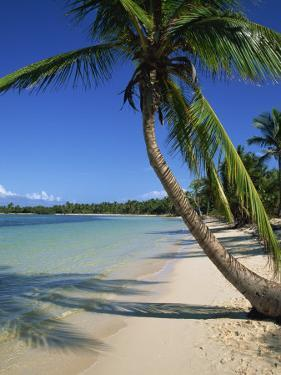 Bavaro Beach, Dominican Republic, West Indies, Caribbean, Central America by Lightfoot Jeremy