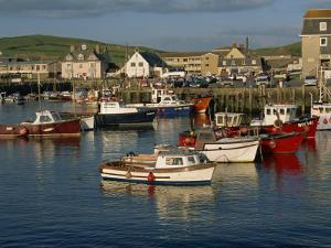Boats Moored in West Bay Harbour, Dorset, England, United Kingdom, Europe by Lightfoot Jeremy