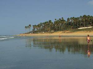Kotu Beach, Gambia, West Africa, Africa by Lightfoot Jeremy