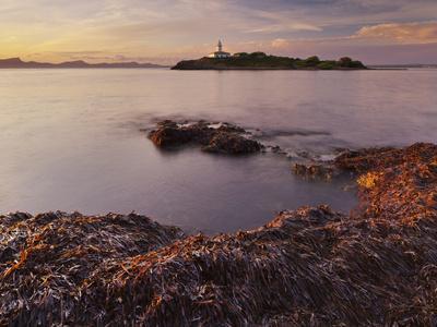https://imgc.allpostersimages.com/img/posters/lighthouse-of-alcanada-beach-sea-grass-dusk-majorca-spain_u-L-Q11YTU20.jpg?p=0