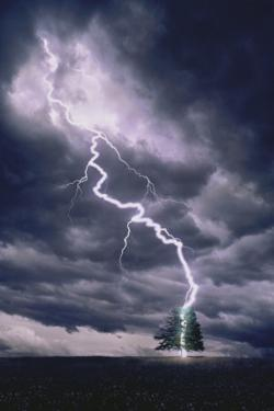 Lightning Striking Tree II