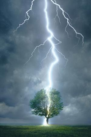 Lightning Striking Tree
