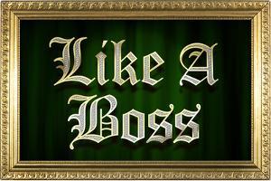 Like A Boss Faux Frame Humor Poster