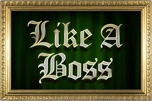 Like A Boss Faux Frame Humor Poster