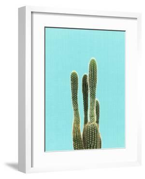 Cactus On Blue by LILA X LOLA