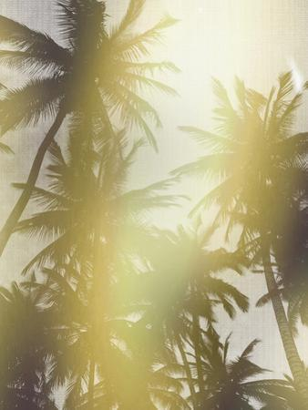 Trees in Paradise by LILA X LOLA