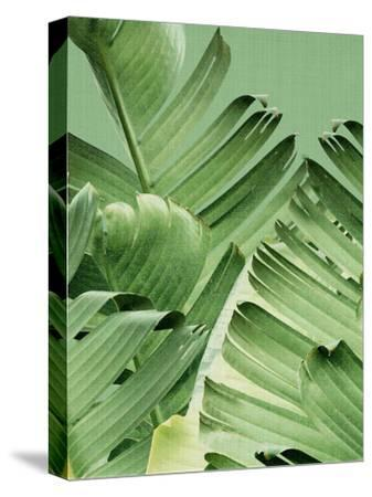 Tropical Leaves 2 by LILA X LOLA