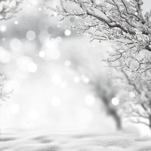Winter Background by lilkar