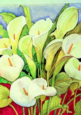 Arum Lilies by Lillian Delevoryas