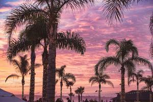Coronado Beach Sunset by Lillis Werder