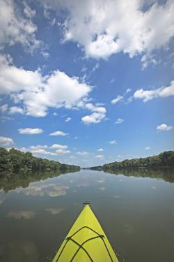 Potomac River Kayak by Lillis Werder