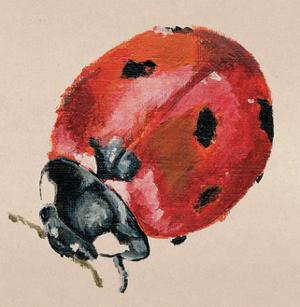 Ladybird by Lily Greenwood
