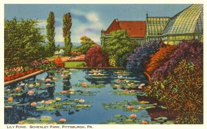 Lily Pond, Schenley Park, Pittsburgh, Pennsylvania