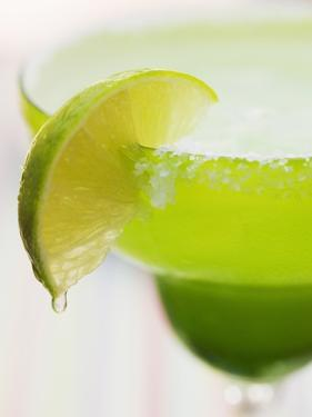 Lime Wedge on Cocktail Glass with Sugared Rim
