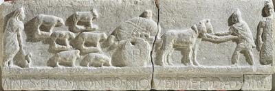 https://imgc.allpostersimages.com/img/posters/limestone-bas-relief-showing-transhumance-scene-from-sulmona-italy-bc_u-L-PRLOBF0.jpg?p=0