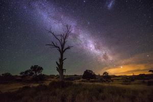 Night Sky by Lincoln Harrison