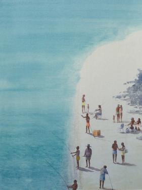 Bird's-Eye Beach, 2000 by Lincoln Seligman