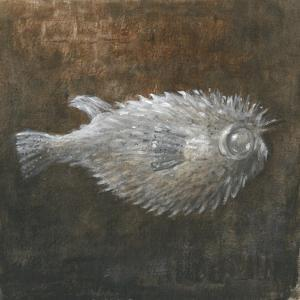 Puffer Fish, 2015 by Lincoln Seligman