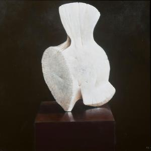 Whole Vertebra, 2012 by Lincoln Seligman
