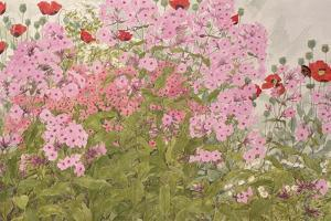 Pink Phlox and Poppies with a Butterfly by Linda Benton