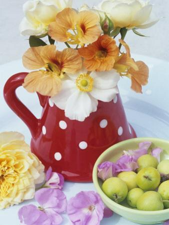 Flowers in Jug and a Bowl of Wild Apples by Linda Burgess