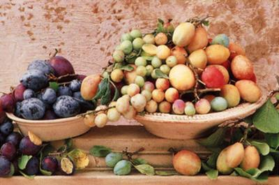 Selection of Plums in Bowl by Linda Burgess