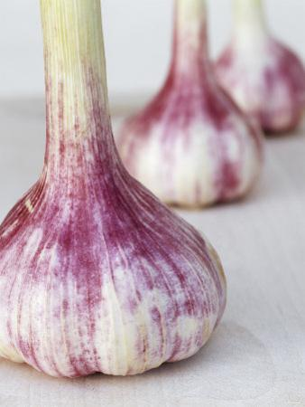 Three Fresh Garlic Bulbs by Linda Burgess