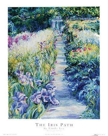 The Iris Path
