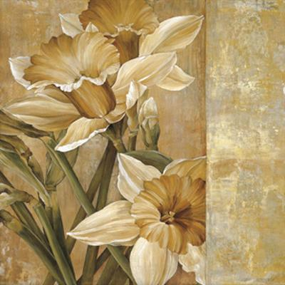 Champagne Daffodils I