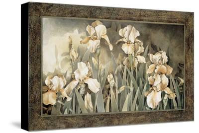 Field of Irises