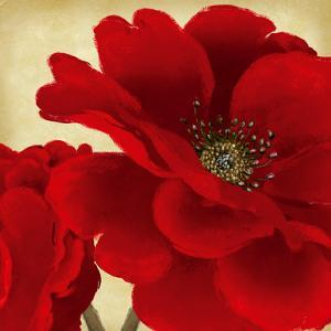 Red Peony I by Linda Wood