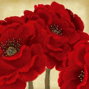 Red Peony II by Linda Wood