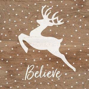 Believe Reindeer by Linda Woods