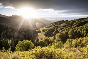Big Cottonwood Canyon, Utah by Lindsay Daniels