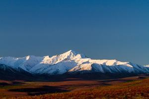 Denali In The Fall On A Clear Day by Lindsay Daniels