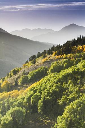 Fall in Big Cottonwood Canyon, Utah