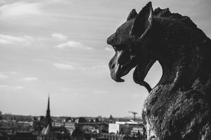 Gargoyle On Top Of Notre Dame In Paris by Lindsay Daniels