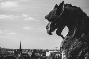 Gargoyle On Top Of Notre Dame In Paris by Lindsay Daniels