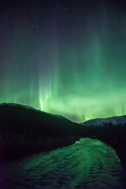 Northern Lights, Aurora Borealis, River by Lindsay Daniels